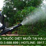 Phun thuốc diệt muỗi tại Hạ Long